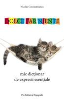 Mic dicționar de expresii esențiale